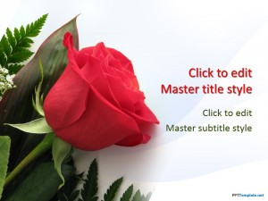 Free powerpoint templates roses datariouruguay bride and rose ppt template free powerpoint templates toneelgroepblik Gallery