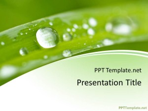 nature ppt template, Powerpoint