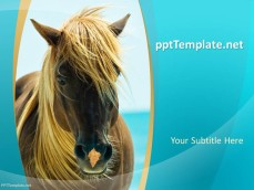 0027-horses-ppt-template-0001-1