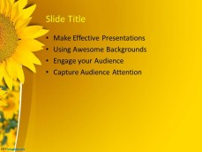 0029-sunflower-ppt-template-3