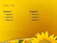 0029-sunflower-ppt-template-4