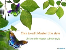 10029-04-nature-leaves-ppt-template-1
