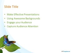 10029-04-nature-leaves-ppt-template-2