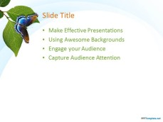 10029-04-nature-leaves-ppt-template-3