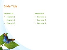 10029-04-nature-leaves-ppt-template-4