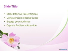 10036-03-beautiful-flowers-ppt-template-2
