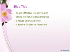 10036-03-beautiful-flowers-ppt-template-3