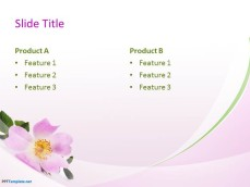 10036-03-beautiful-flowers-ppt-template-4