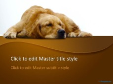 10041-01-sepia-dog-ppt-template-1
