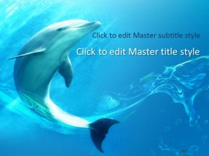 Free Dolphin PPT Template
