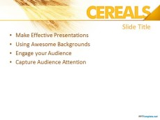 10152-cereals-ppt-template-0001-2