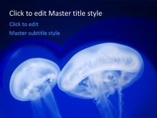 10334-jellyfish-ppt-template-0001-1